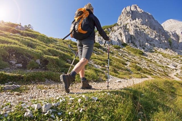 Séjour CHAMOIS FACE AU MONT BLANC Alpes Aravis Mont Blanc - France