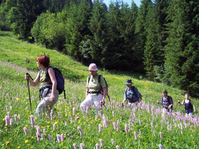 WEEK-END RANDO LIBERTE AU PAYS DU MONT BLANC Alpes Aravis Mont Blanc - France