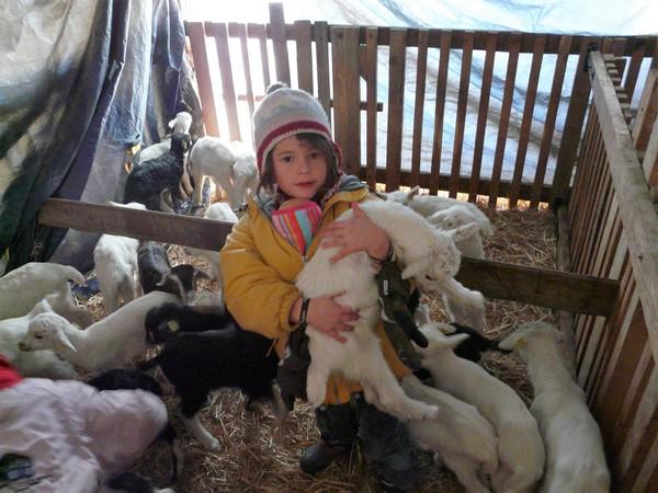 Plaisirs d'hiver en vallée de Cervières -5c719a7ab8714: /