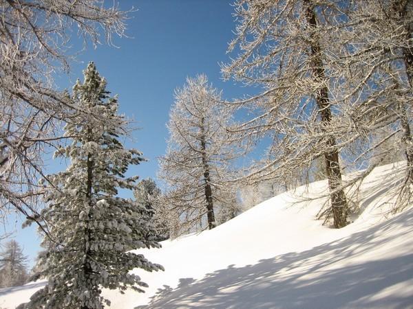 Fin d'année conviviale dans la vallée de Cervières -5de8feea30722: /