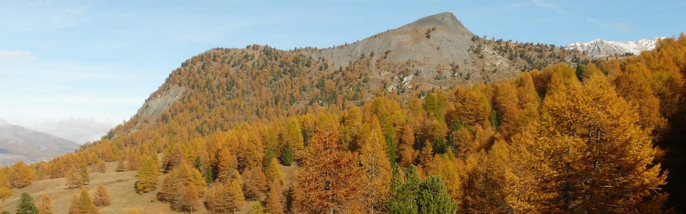 A pied, le Briançonnais aux couleurs d'automne -5fb5d55929212: /