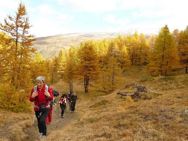A pied, le Briançonnais aux couleurs d'automne -5fb5d5592925d: /