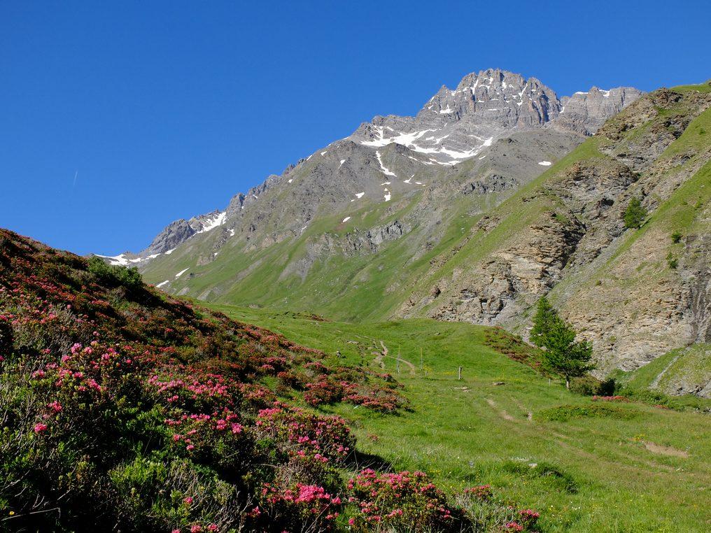 Autour de l'Izoard, cols et vallées authentiques à vélo électrique  -5f634cf108552: /