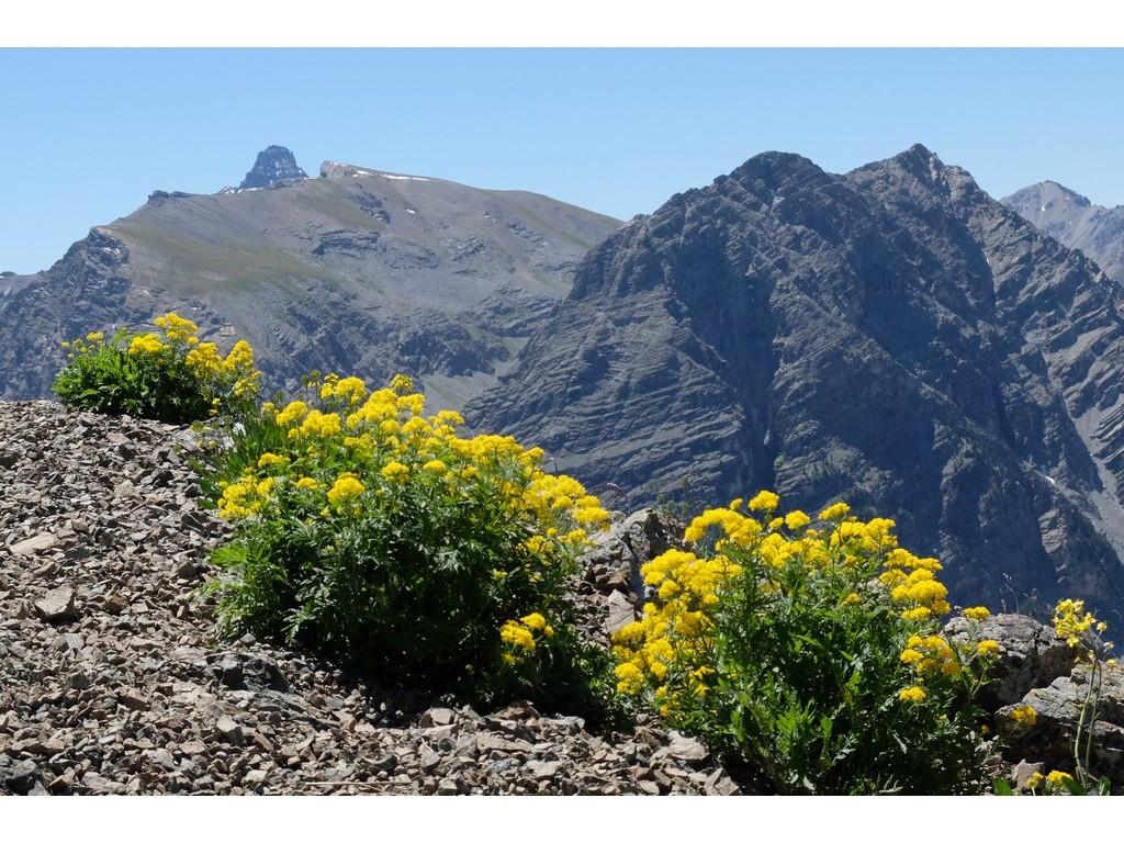 Randonnée itinérante sur les chemins d'Izoard -5f8bb19e6b936: /