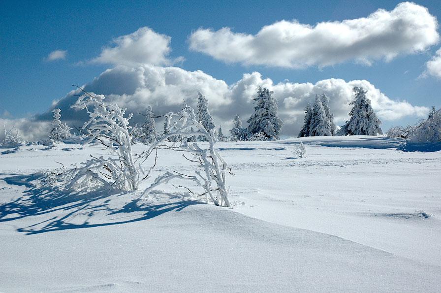 Le Lac Blanc en Liberté